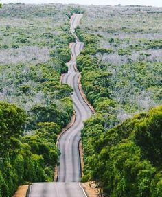 Flinders Chase National Park - Kangaroo Island ~ Photograph Byb @cameronzegers
