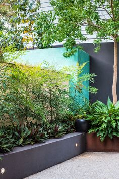 modern garden design with mosaic wall and raised garden beds in claremont