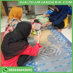 Jual Telur Jangkrik Jombang Palembang, Granddaughters