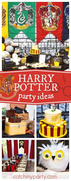 Welcome to the wonderful Wizarding World of Harper! This Harry Potter party is so cool!! See more party ideas and share yours at CatchMyParty.com #catchmyparty #partyideas #harrypotterbirthdayparty #wizard