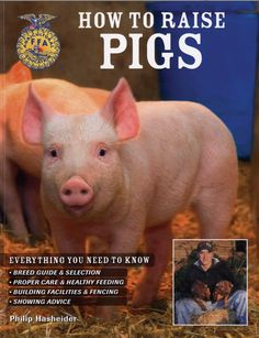 how to raise pigs approved by the dept of agriculture ffa in stock