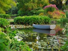 One of our of best UK gardens to visit' The Beth Chatto Gardens – Colchester, Essex