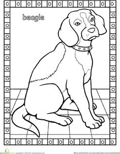 This beagle coloring page will introduce this breed to your little one. Does he know what a beagle looks like? Find out in this coloring activity! Dog Coloring Page, Cool Coloring Pages, Adult Coloring, Coloring Books, Colouring, Art Beagle, Beagle Puppy, Beagle Colors, Pocket Beagle