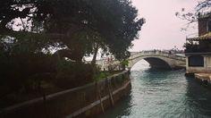Verso i Giardini #detourismvenezia #detourism #venezia #Venice #venedig #venecia #venise #instavenice #instavenezia #威尼斯 #ヴェネツィア #iger #igersveneto #igersitalia #igersvenezia #giardini #giardinidellabiennale #biennale #bestdestinations #beautifuldestinations #bestofvenice #thisisvenice #visitveneto #lovevenice #april #igerseurope #igersvenice #igersoftheday by detourismvenezia