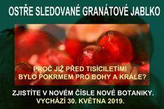 Jablko poznání. Jablko sváru. Jablko plodnosti...  To vše bylo granátové jablko pro lidstvo již před tisíciletími.  Vědci zjistili, že ne vše jsou jen mýty.  Granátové jablko má unikátní složení, jaké v přírodě nemá žádná jiná rostlina.  Poznejte tajemství bioaktivních látek v granátovém jablku. Možná vám pomohou zlepšit vaše zdraví.  V novém čísle Nové Botaniky.  OSTŘE SLEDOVANÉ GRANÁTOVÉ JABLKO  VYCHÁZÍ 30. KVĚTNA 2019 Food, Essen, Meals, Yemek, Eten