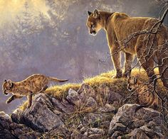[EndLiss scans - Wildlife Art] Robert Bateman - Excursion - Cougar and Kits