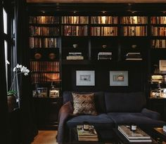 Splendid Sass - judylinn10@gmail.com - Gmail.....Rich navy paint and sofa with dramatic lighting, makes for a very sophisticated Library.