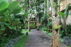 Tropical Landscape - tropical - Landscape - Other Metro - made suwiriya