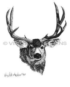 Mule Deer, Arizona Big 10 game animals pencil drawing by western Artist Virgil C. Stephens