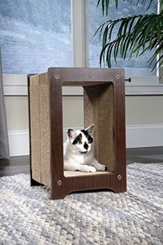 Furniture & Scratchers Nice Fish Scratching Board Mat Pad Cat Sisal Loop Carpet Scratcher Indoor Home Furniture Table Chair Sofa Legs Protector Pet Toy Aromatic Flavor