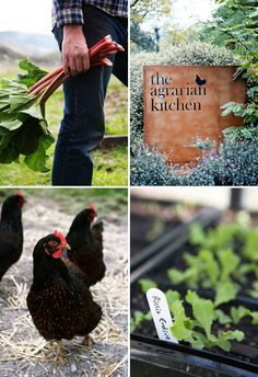 Beautiful details from the grounds of The Agrarian Kitchen. Photos by Luke Burgess, Amanda McLauchlan, Jared Fowler.