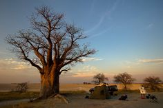How to book campsites at Botswana's national parks