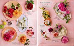 martha stewart's glossary of rose fragrances