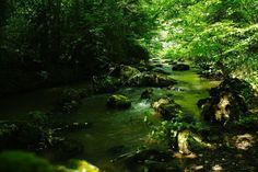 Quiet area in Ariege near Pyrenees...