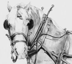 wagon horse - Bit of an older piece, I'm still quite fond of this.