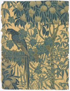 Wallpaper, Walter Crane, 1908, ~ Macaw
