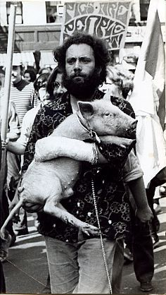 """David Fenton.  Yippies Marching Through the Streets with """"Pigasus"""" their Chosen Candidate for President, New York City,September, 1968"""