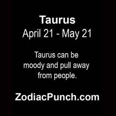 taurus4