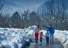 Book Manali Tour Packages From Delhi - Book online special Tour and Travel packages from Delhi-Manali-Chandigarh-Delhi including accommodation in hotel or resorts booking and car hire for a memorable trip to Himachal Pradesh, India. For more Information contact +91-9266626681 / 82 / 83 / 84 or Visit atravelaa.com