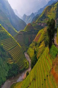 Mù Cang Chải is a rural district (of Yen Bai province), in the northeastern Vietnam. In Mu Cang Chai there are many terraced fields (mainly for rice), creating amazing landscapes which stretch down the mountain sides.Wooden houses and guard boxes can be spotted between the terrace fields.