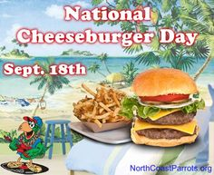It's Thirsty Thursday, so wash down your cheeseburger with a cold one on National Cheeseburger Day (in paradise).  #NationalCheeseBurgerDay #ParrotHeads