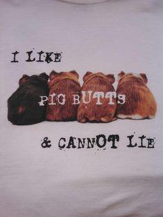Big guinea pig buts!