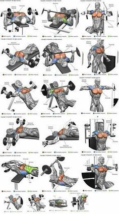 How To Get The Best Chest Workout is part of Chest workouts - Heavy compound exercises are known as one of the main exercises for gaining muscle mass and they should be included in your chest training There are a lot of opinions Chest Workout For Men, Chest Workout Routine, Gym Workout Tips, Weight Training Workouts, At Home Workouts, Body Training, Strength Training, Chest And Shoulder Workout, Gym Workouts For Men