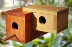 Binary Birdhouse