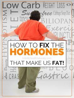 How To Fix The Hormones That Make Us Fat | holistichealthnaturally.com