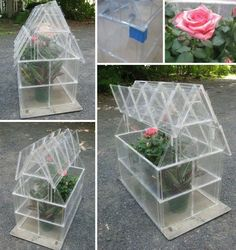 DIY Glass House CD Holder creative up-cycling idea such an awesome idea for apartment porch or balcony gardens