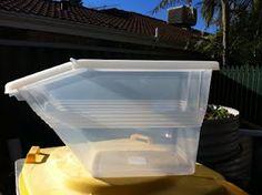 Diy Grubage Bin To Grow Black Soldier Fly Larvae On Compost