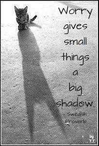 Worry gives small things a big shadow.