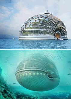 A brilliant design of a hotel at sea !!  Ark Hotel in china designed by Russian firm Remistudio !! What an engineering !!!  ♥Un excelente diseño de un hotel en el mar!!  Ark Hotel en china, diseñado por el ruso Remistudio!!    ¿Qué una ingeniería!!! (