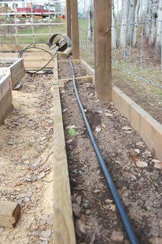 Raised bed gardening with drip irrigation installed.  Good for around inside edges of vegetable garden.