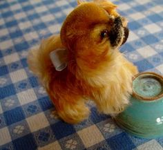 Steiff Dog Peky Toy Pekingese 1950s tiny Mohair vintage is Adorable $105.00