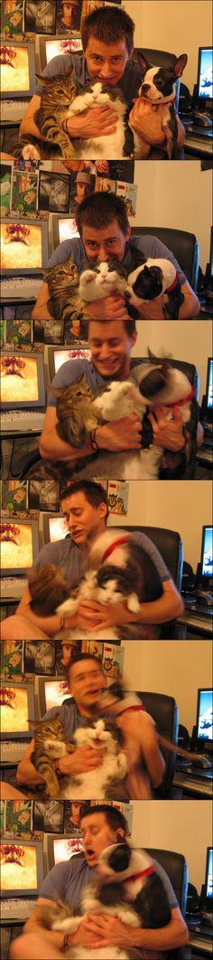 La foto familiar   Las 100 fotos más importantes de los gatos de todos los tiempos