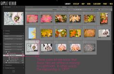 How to Fix Missing or Offline Photos in Lightroom