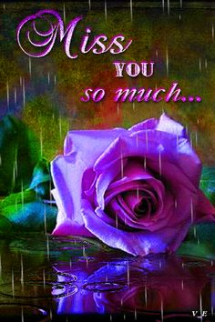 Latest 151 Good morning images for my love ~ Good morning inages Missing You Love, Love You Gif, You Dont Love Me, Miss You Mom, I Love You Forever, Good Night Gif, Good Morning My Love, Morning Love Quotes, Miss You Images
