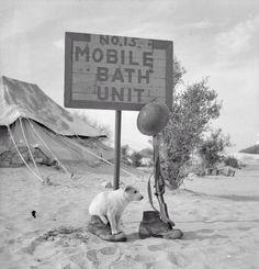 Norte de África.
