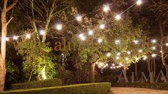 150318 - ALMA PROJECT @ Borgo Stomennano - Giardino Botanico - Bulbs lighting test 3