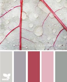Design Seeds, for all who love color. Apple Yarns uses Design Seeds for color inspiration for knitting and crochet projects. Palettes Color, Colour Pallette, Color Palate, Colour Schemes, Color Patterns, Color Combinations, Color Charts, Design Seeds, Room Colors