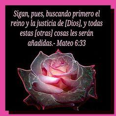 Mateo 6:33