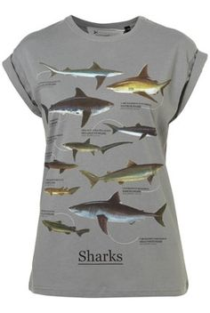 Grey Shark Print Tee By Tee And Cake - Topshop - StyleSays