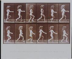 Plate 469, 'Child running'    'Child running' 1887, Eadweard Muybridge (1830-1904); Collotype process;