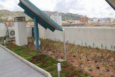 Villena en Villena, Valencia Valencia, Sidewalk, Alicante, Park, Buildings, Veggies, Walkway, Parks, Walkways