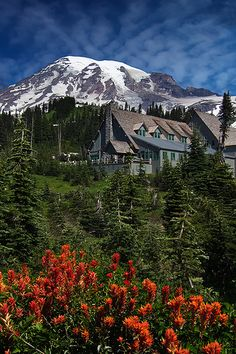 """My novel """"Promise"""" leads to an awareness of this. Paradise Inn at Mt. Rainier National Park in Washington Places Around The World, Oh The Places You'll Go, Places To Travel, Places To Visit, Around The Worlds, Travel Pics, Wonderful Places, Beautiful Places, Beautiful Scenery"""