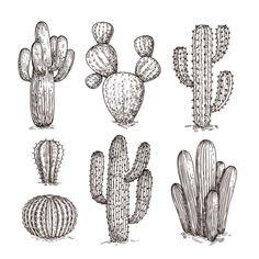 Cactus Drawing, Wall Drawing, Cactus Painting, Cactus Planta, Cactus Y Suculentas, Cactus Tattoo Small, Cactus Doodle, Cactus Photography, Western Landscape