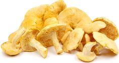 Hedgehog Mushrooms Information and Facts