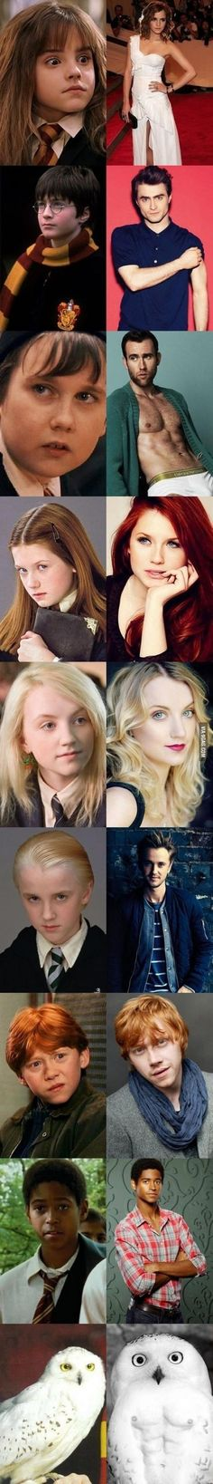 Funny pictures about Everyone In Harry Potter Has Changed. Oh, and cool pics about Everyone In Harry Potter Has Changed. Also, Everyone In Harry Potter Has Changed photos. Harry Potter World, Memes Do Harry Potter, Magia Harry Potter, Estilo Harry Potter, Mundo Harry Potter, Harry Potter Pictures, Harry Potter Cast, Harry Potter Universal, Harry Potter Fandom