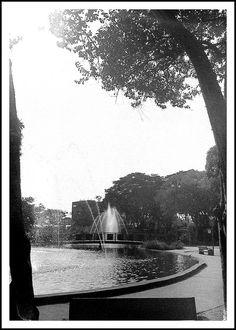 Pelo Santos-Dumont